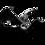 brontosaurusrex