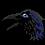 sacredbirdman